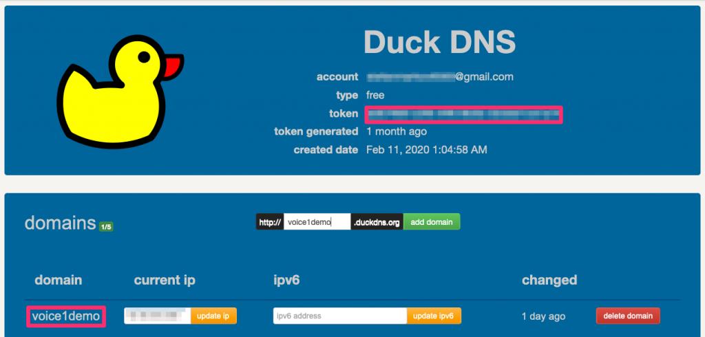 Duck DNS token and domain
